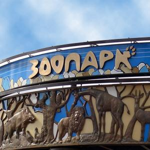 Зоопарки Большого Пикино